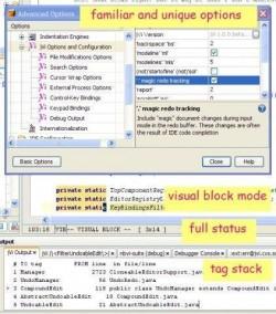 JavaVi - vi/vim editor clone